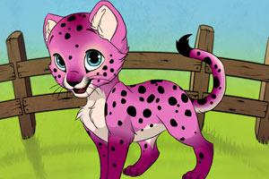可爱小豹子