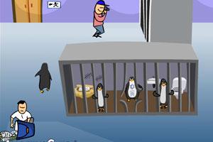企鹅逃出动物园
