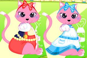 打扮可爱猫咪