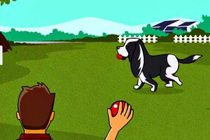 训练宠物狗狗