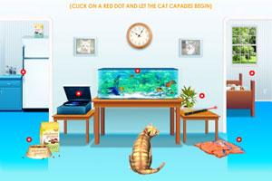 猫猫游乐园