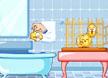 帮小鸡洗澡澡