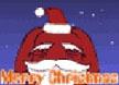柏拉兔的圣诞
